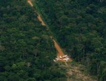 Barroso manda governo tomar medidas para proteger terras Yanomami e Munduruku