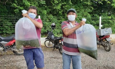 Seagri fará a doação de mais de 10 mil alevinos em Tanque d'Arca nesta sexta-feira (14)